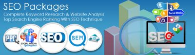 SEARCH ENGINE OPTIMIZATION (SEO) Packages